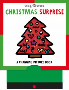 Christmas Surprise : A Changing Picture Book