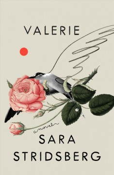 Valerie : or the faculty of dreams : amendment to the theory of sexuality / Sara Stridsberg ; translated from the Swedish by Deborah Bragan-Turner.
