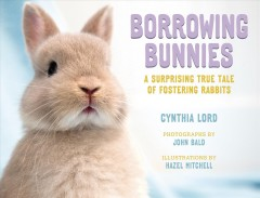 Borrowing bunnies : a surprising true tale of fostering rabbits / Newbery Honor author Cynthia Lord ; photographs by John Bald ; illustrations by Hazel Mitchell.