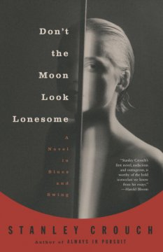 Don't the Moon Look Lonesome : A Novel in Blues and Swing.