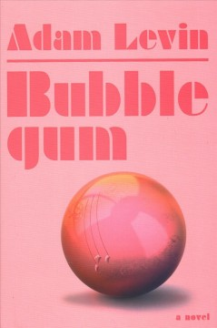 Bubblegum : a novel / Adam Levin.