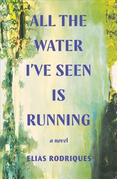 All the water I've seen is running a novel / Elias Rodriques.