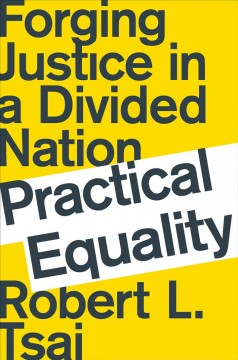 Practical equality : forging justice in a divided nation