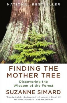 Finding the mother tree Suzanne Simard.