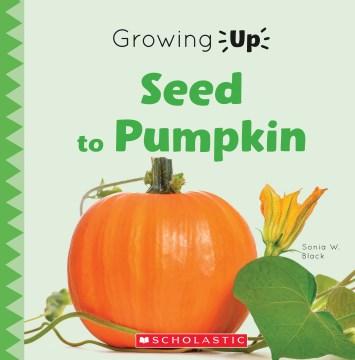 Seed to pumpkin