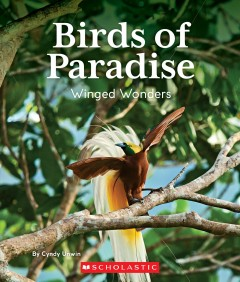 Birds of paradise : winged wonders