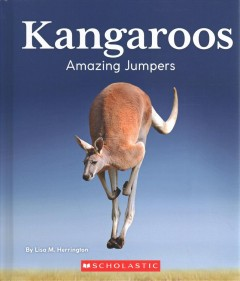 Kangaroos : amazing jumpers
