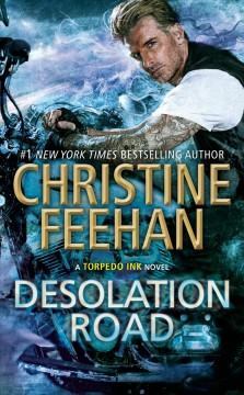 Desolation road / Christine Feehan.