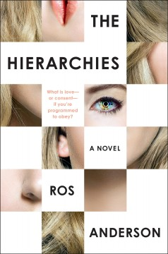The hierarchies : a novel