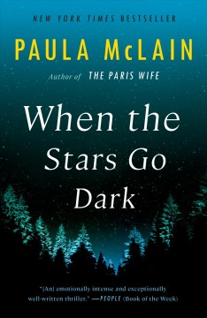 When the stars go dark a novel / Paula McLain.