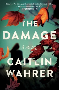 The damage : a novel