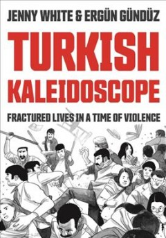 Turkish kaleidoscope : fractured lives in a time of violence