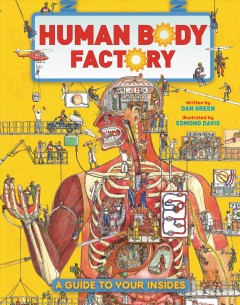 The Human Body Factory : The Nuts and Bolts of Your Insides