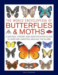 The World Encyclopedia of Butterflies & Moths : A Natural History and Identification Guide to over 565 Varieties Around the Globe