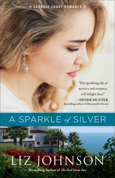 A sparkle of silver / Liz Johnson.