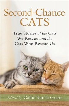 Second chance cats : true stories of the cats we rescue and the cats who rescue us