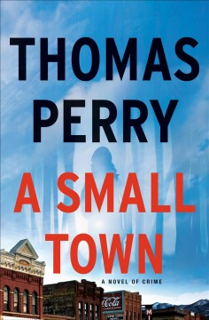 A small town : a novel Thomas Perry.