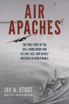 Air Apaches : the true story of the 345th Bomb Group and its low, fast, and deadly missions in World War II