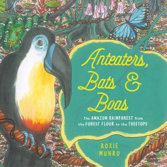 Anteaters, bats & boas : the Amazon rainforest from the forest floor to the treetops