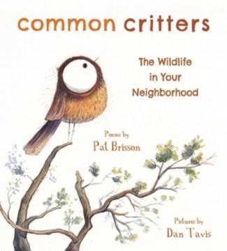 Common critters : the wildlife in your neighborhood