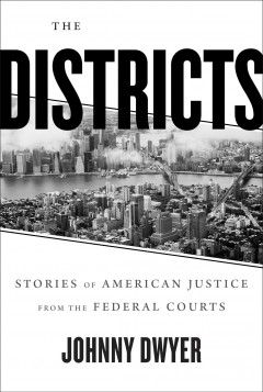 The districts : justice and power in New York City