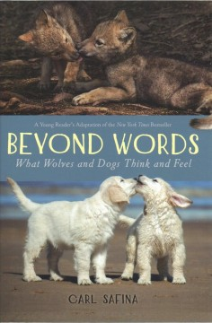 Beyond Words : What Wolves and Dogs Think and Feel: Young Readers Adaptation
