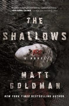 The Shallows : A Nils Shapiro Novel