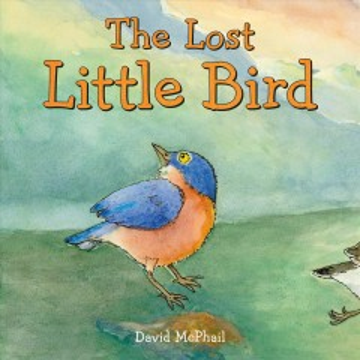 The lost little bird / David McPhail.