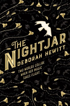 The nightjar / Deborah Hewitt.