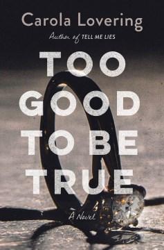 Too good to be true / Carola Lovering.