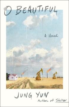 O beautiful : a novel