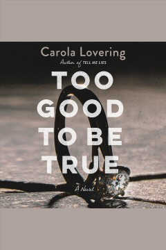 Too good to be true : a novel [electronic resource] / Carola Lovering.
