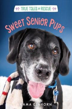 Sweet senior pups / Tales of Rescue and Release