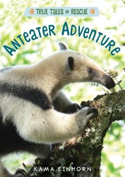Anteater teacher