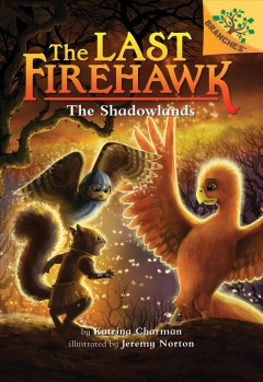 The Shadowlands : A Branches Book