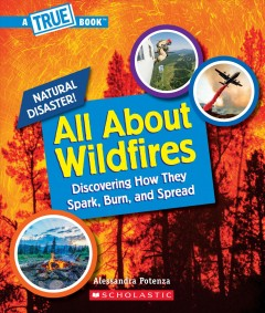 All about wildfires
