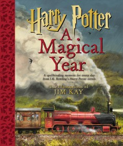 Harry Potter : a magical year