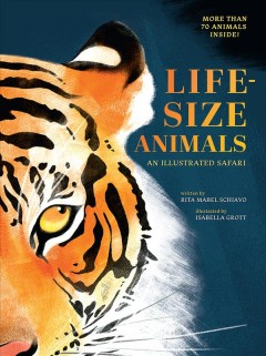 Life-size animals : an illustrated safari / written by Riva Mabel Schiavo ; illustrated by Isabella Grott.