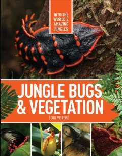 Jungle insects & vegetation / Lori Vetere.