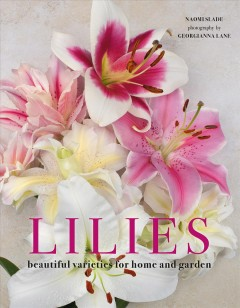 Lilies : Beautiful Varieties for Home and Garden
