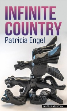 Infinite country : a novel / Patricia Engel.