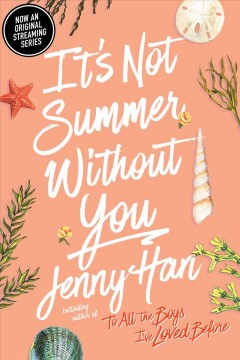 It's not summer without you a Summer novel / Jenny Han.