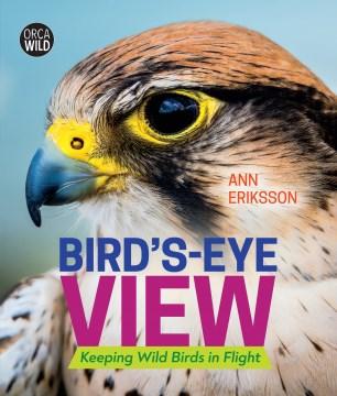 Bird's-Eye View : Keeping Wild Birds in Flight