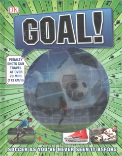 Goal! : Soccer as you've never seen it before.