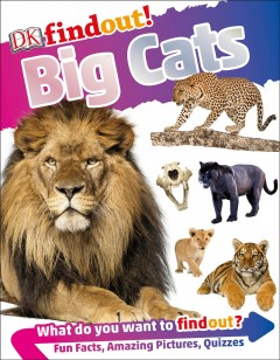 Big cats / author: Andrea Mills ; consultant: Giles Clark.
