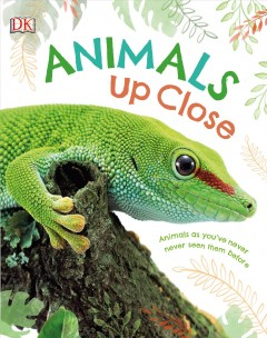 Animals Up Close : Animals As You've Never Seen Them Before