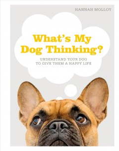 What's my dog thinking? : understand your dog to give them a happy life