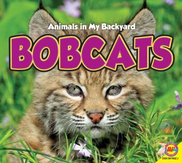 Bobcats / Aaron Carr.