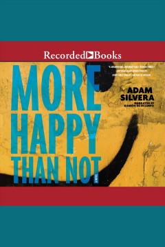More happy than not [electronic resource] / Adam Silvera.