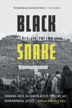 Black snake : Standing Rock, the Dakota Access Pipeline, and environmental justice